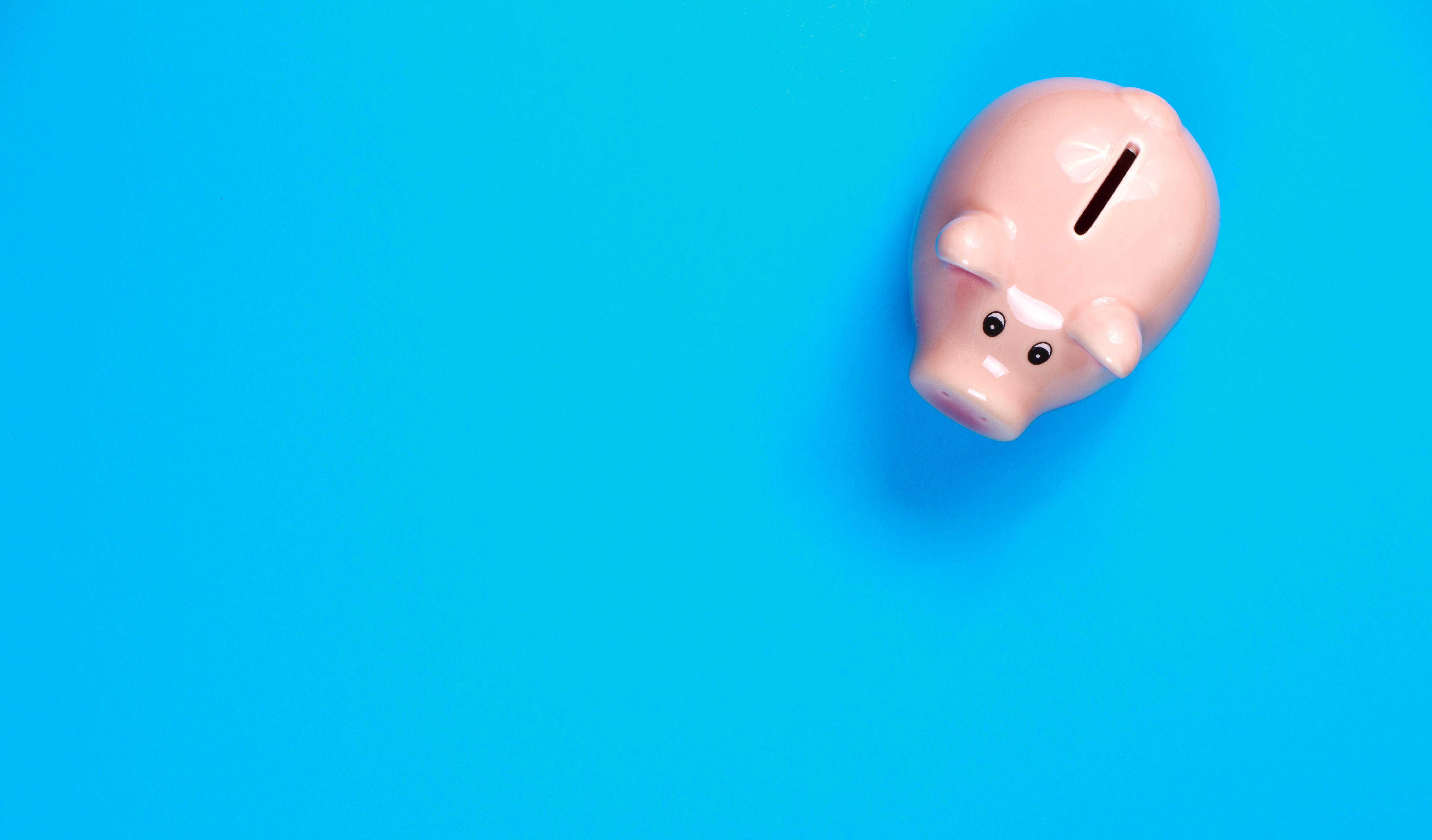 Financially-Focused AI